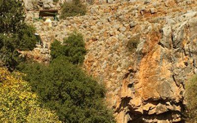 Discover Caesarea Philippi & Tel Dan